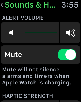 Apple Watch Sounds & Haptic Settings